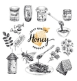 Honey set Beekeeping in vector image
