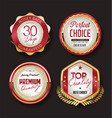 retro vintage golden badges labels and ribbons 981 vector image