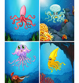 Sea animals under the sea vector image vector image