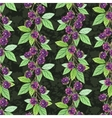 seamless pattern with branch blackberries vector image
