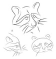 set of stylized raccoons faces hand drawn linear vector image