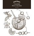 coconut pina colada sketch vector image vector image