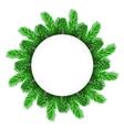 Green Fir Circle Frame vector image vector image