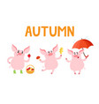 little piggy different emotions and situations vector image
