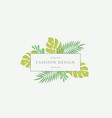 monstera tropical leaves fashion sign or logo vector image vector image