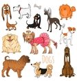 set funny cartoon dogs vector image