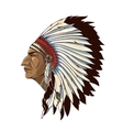 Single American Indian In Profile vector image vector image