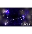 Symbol Pisces Zodiac Sign vector image