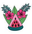 watermelon tropical fruits flower foliage exotic vector image vector image