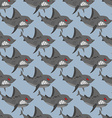 Terrible shark Pack of sharks seamless background vector image