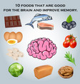 10 foods that are good for the brain and improve