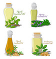 essential oils part 3 vector image vector image