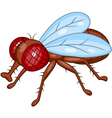 Fly cartoon vector image vector image