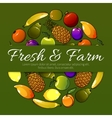fruits banner Fresh farm fruit flat icons vector image vector image