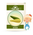 pack squash seeds icon vector image vector image