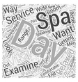 What to Look For In a Day Spa Word Cloud Concept vector image vector image
