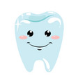 a healthy tooth hygiene oral cavity vector image