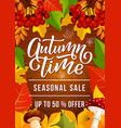 autumn sale banner for fall season discount offer vector image vector image