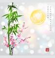 bamboo sun sakura in blossom vector image vector image