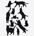 cats collection - isolated silhouette vector image vector image