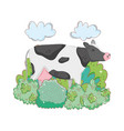 cow farm animal with garden vector image