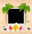Empty photo frame with palm flowers frangipani sea vector image