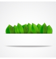 green leaves on a white background vector image vector image
