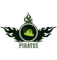 Pirate design elements vector image vector image