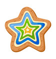 star cookie icon holiday sweet decoration vector image vector image