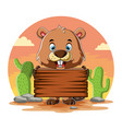 beaver holding blank wooden board vector image vector image