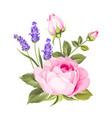 blooming spring flowers vector image vector image