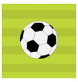 Football soccer ball on green grass field back vector image vector image