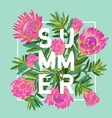 hello summer tropical design floral vintage vector image