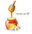 Honey Stick And Jar vector image