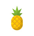 pineapple fruit flat isolated icon vector image vector image