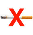 sign no smoking vector image vector image