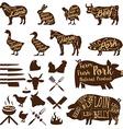 butcher tools Farm animals Fresh pork vector image
