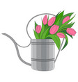 a garden watering can vector image vector image