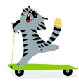 cute funny cartoon cat on kick scooter feline vector image vector image