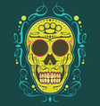 decorative skull color vector image vector image