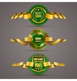 Golden badges vector image