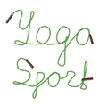 yoga sport vector image