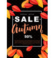 autumn sale design poster vector image vector image