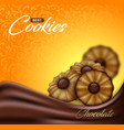 buttery cookies with chocolate on floral pattern vector image vector image