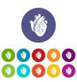 human heart organ icons set color vector image