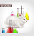 lab experiment poster vector image vector image