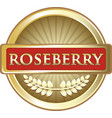 roseberry gold icon vector image vector image
