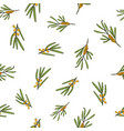sea buckthorn branches seamless pattern vector image