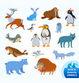 set funny arctic and antarctic animals vector image vector image