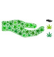 share hand mosaic of hemp leaves vector image vector image